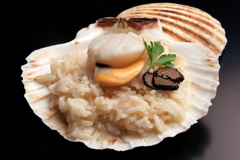 Scallop shell and rice and black truffle slices