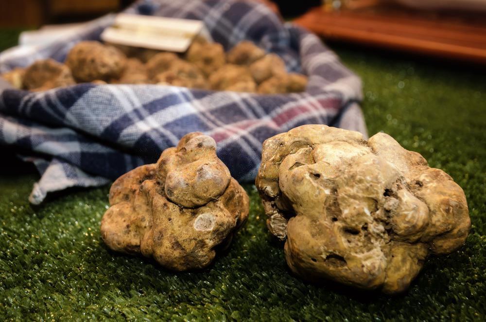 White Truffles (Tuber Magnatum Pico)